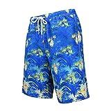 Sannysis Herren 3D Druck Badehose Sommer Badeshorts Hawaii Strand Surf Board Shorts Schnelltrocknend Schwimmhose für Männer (Mesh-Futter) Größen S bis 2XL (M, Blau)
