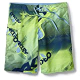 Oakley Herren Boardshorts Polarized 21' Boardshorts